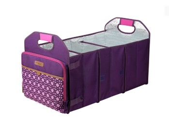 best arctic zone trunk organizer and cooler